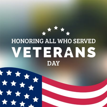 Veterans Day Flag Graphic