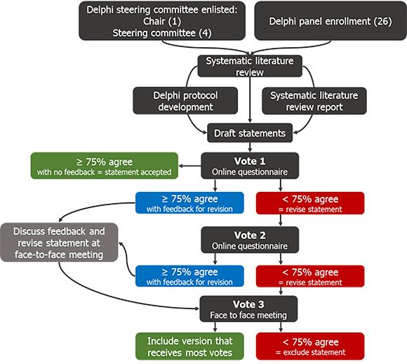 Delphi consensus process diagram